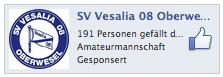 191-Facebook-Vesalia